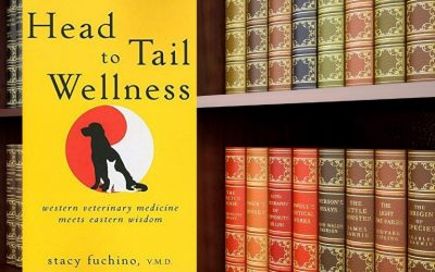 Head to Tail Wellness by Stacy Fuchino, V.M.D. ~ Book Review by Julie-Anne Thorne